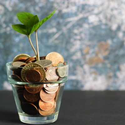 Sprout growing from coins in a glass emphasising savings by choosing a greener solutions such as a water conditioner